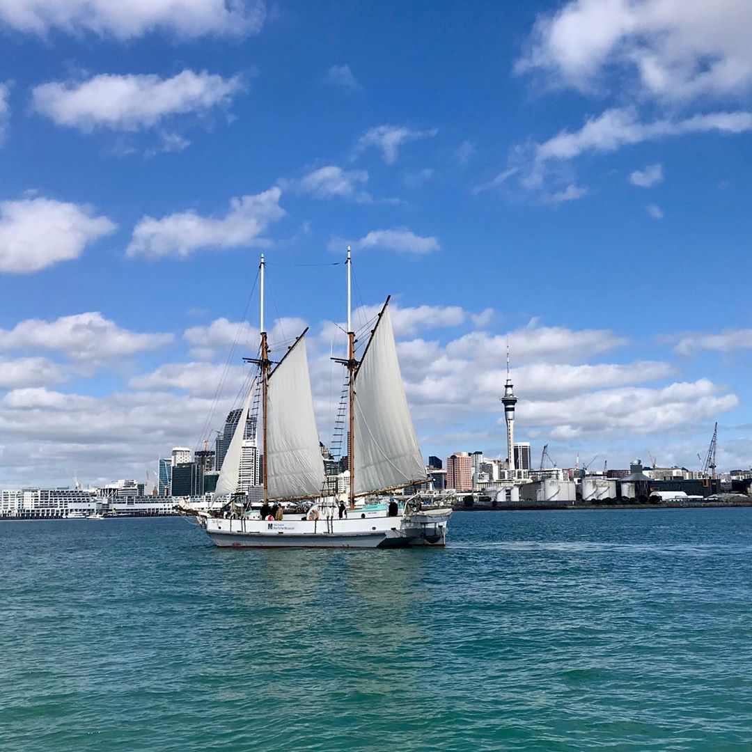 waitemata harbour sailing